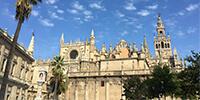 スペイン旅行 お客様の声 イメージ6