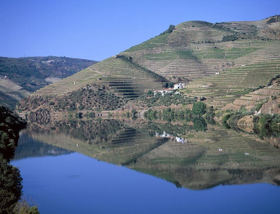 ポートワインの産地・ドゥーロ渓谷