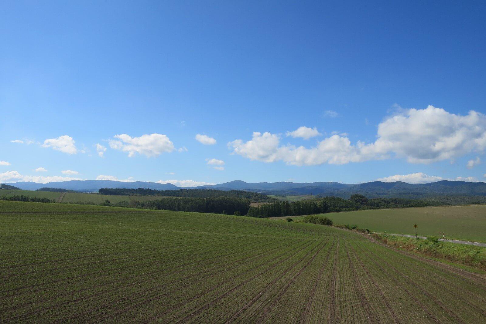 北海道 富良野の風景