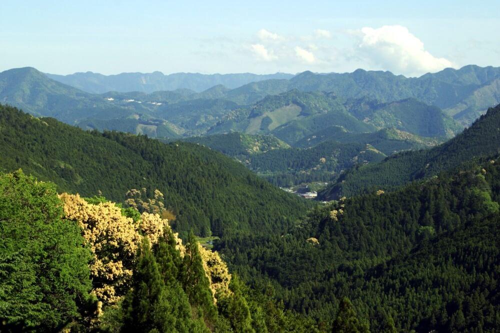 熊野古道 伏拝王子  写真提供:熊野本宮観光協会