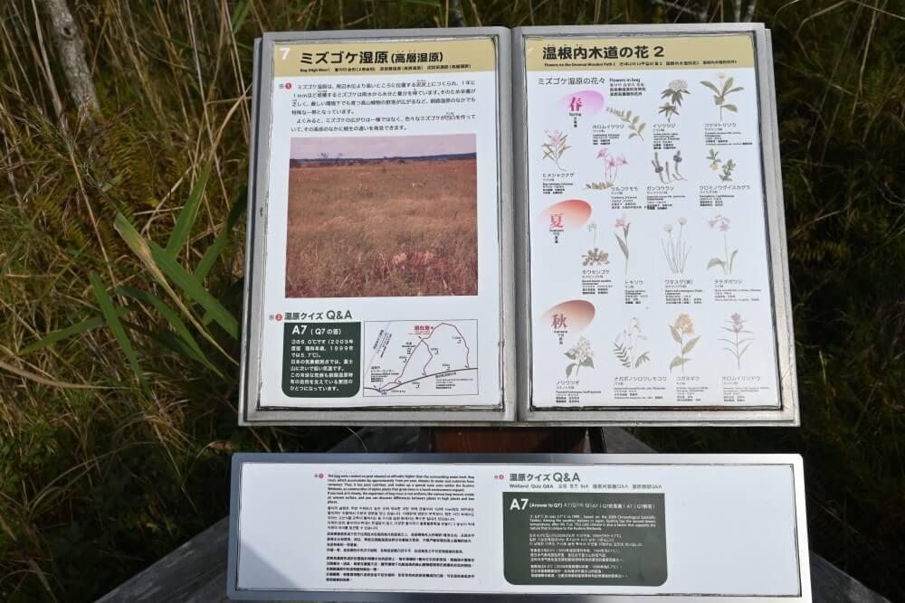 釧路湿原 温根内木道 標識
