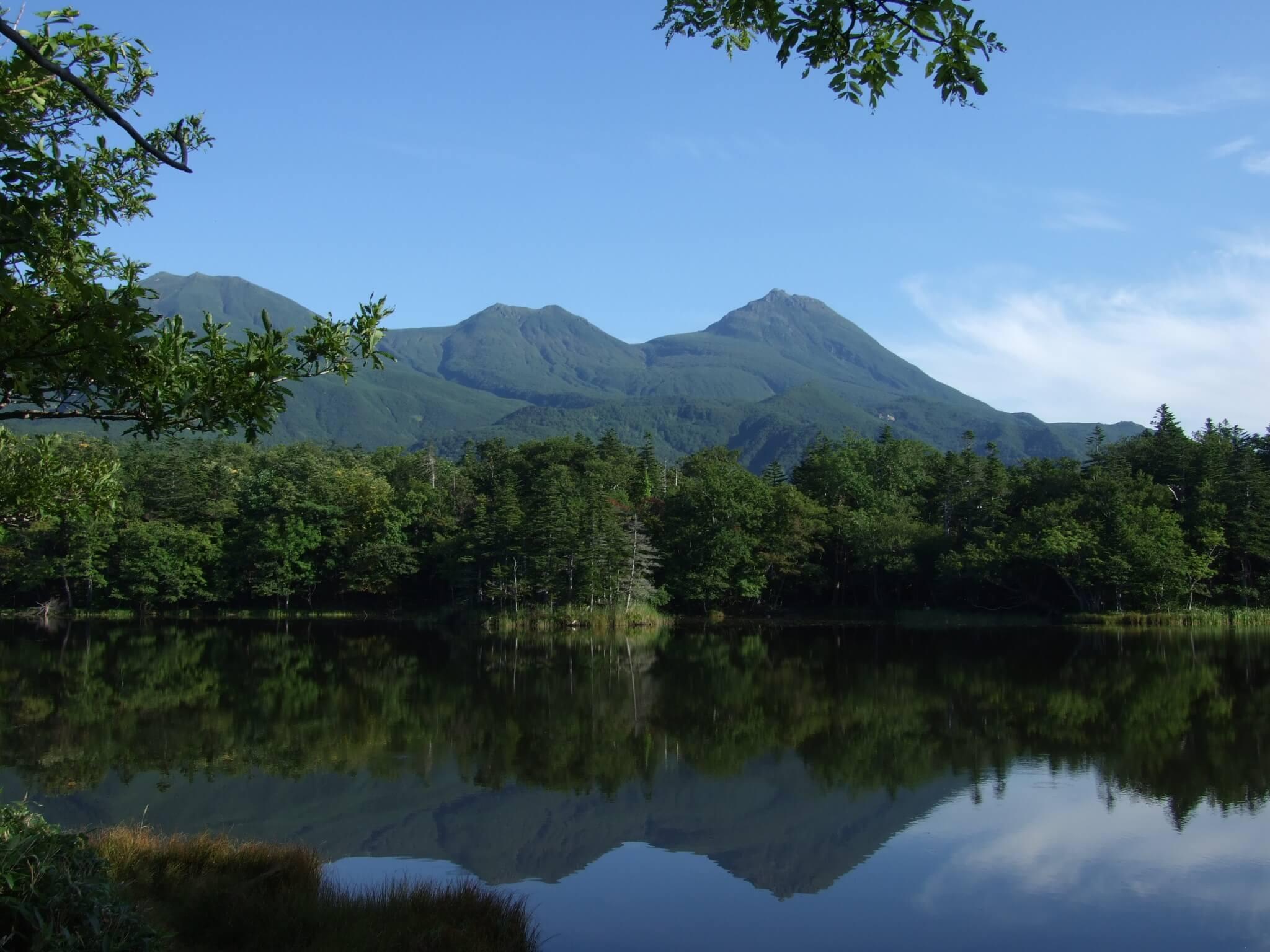 世界自然遺産・知床で「いのちの豊かさ、希少な動植物」を満喫 知床ツアー 3日間