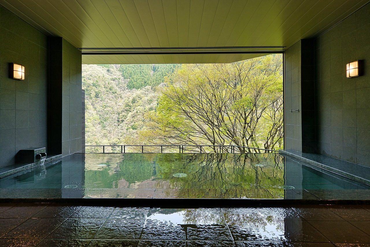 ホテル祖谷温泉 温泉