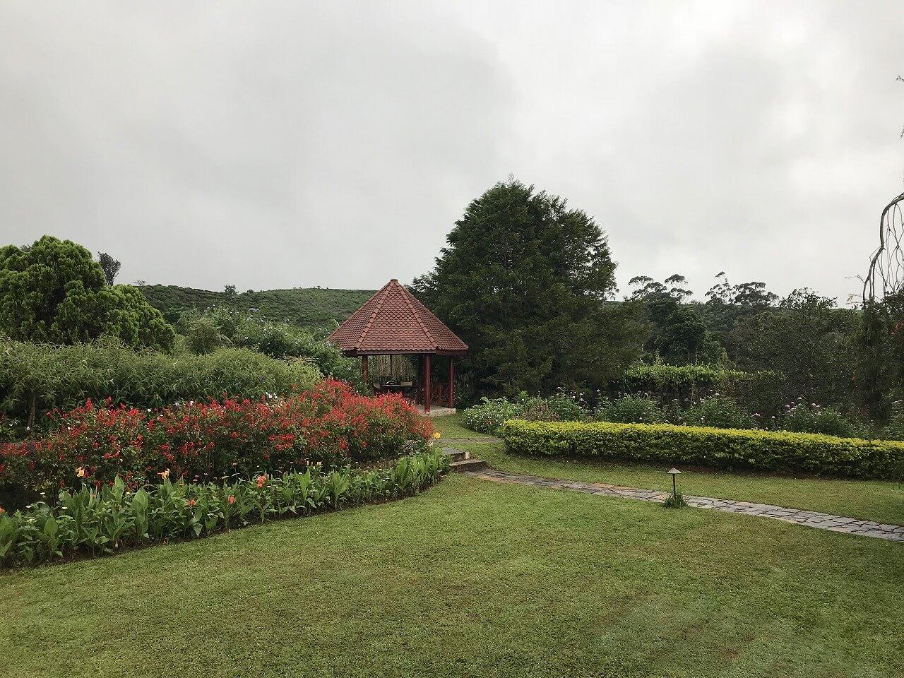 「セイロン紅茶」の国・スリランカ 4ガーデンの散策も
