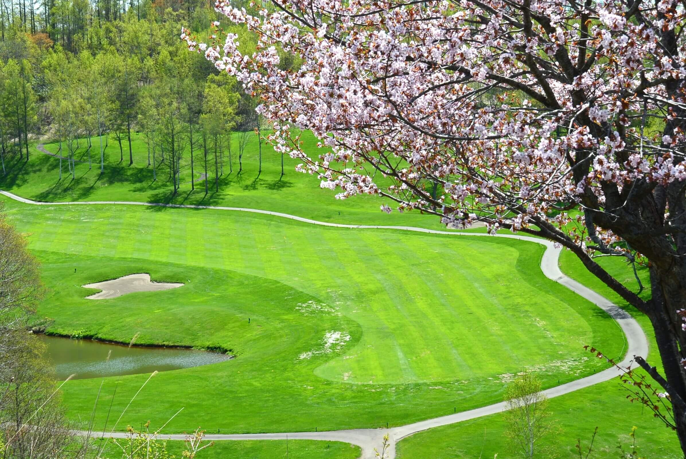【宿泊付きゴルフプラン】リゾートゴルフを楽しもう!ニセコでラグジュアリーゴルフ 3日間