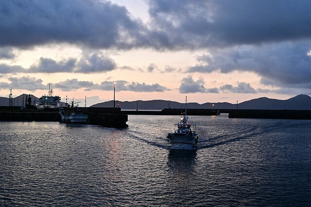 小値賀島 港の朝