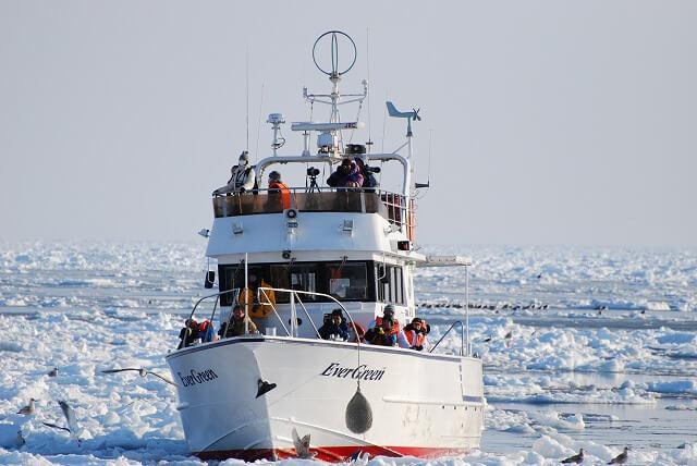 知床ネイチャークルーズ 流氷の中のエバーグリーン